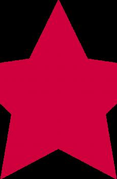 Supporting Membership Star
